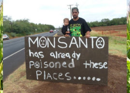 Monsanto wins victory over organic farmers
